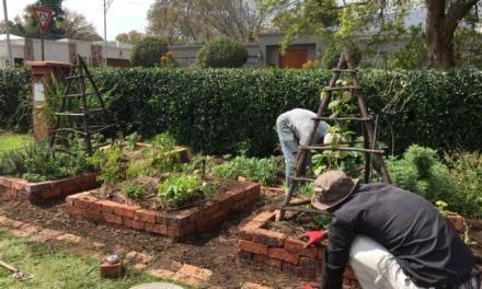 Incredible Edible Parkhurst: Growing a Community
