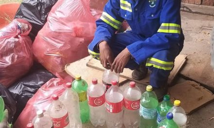 Mobilising the Next Generation of Environmental Caretakers