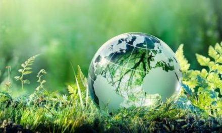 Learner Challenges Peers to Conserve the Environment
