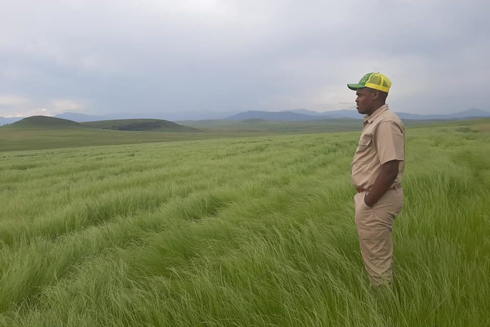 Farming for the Future and to Fight Unemployment